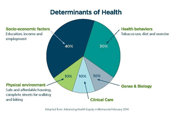 Determinants of Health Graph