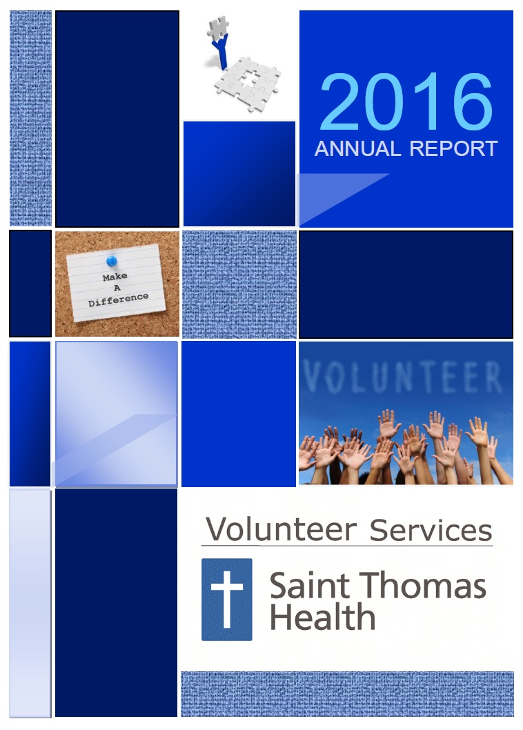 2016 Volunteer Annual Report
